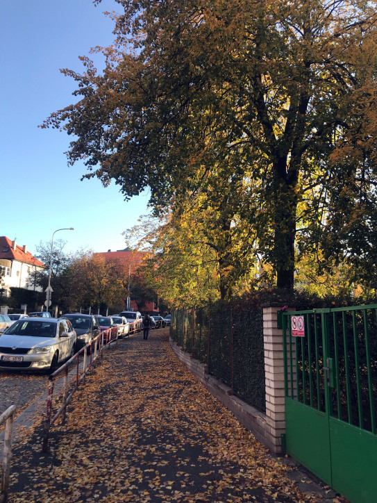 Ambrožova ulice